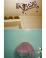 evo ti zebra. by smurphetta