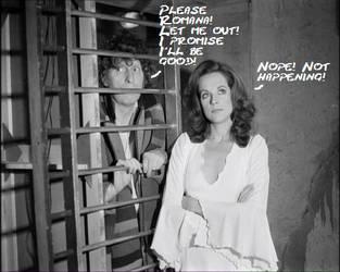 Please Romana! by ironsidemeeper