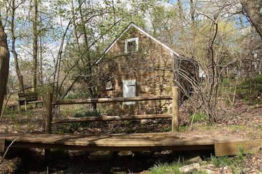 Spring House by Yawnboyfilms