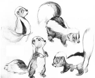 Bambi Skunk. by winduphearts