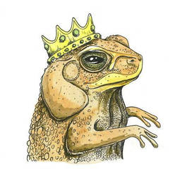 Toad King. by winduphearts