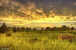 Enchanting Evening by MtnMama