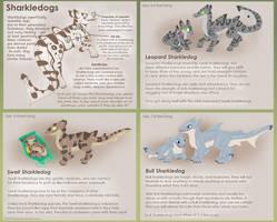 Species Sheet: Sharkledog by Sharkledog