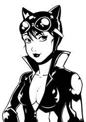 Catwoman by LazyTurtle