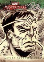 MM3 : Hulk by FrankRapoza