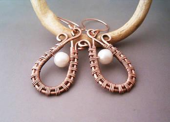 Wire Wrapped Earrings by bleek70