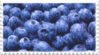 fresh blueberries stamp by GlacierVapour