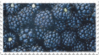 blackberries fruit stamp by GlacierVapour