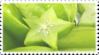 green starfruit stamp by GlacierVapour