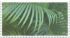green plant aesthetic stamp 3 by GlacierVapour
