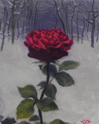 Winter Rose by Hieromagus