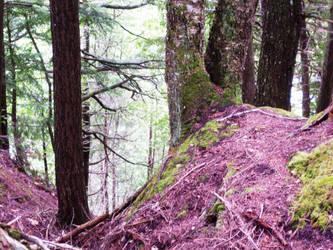 purple moss by azkardchic
