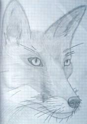 Vixen by Niissoks