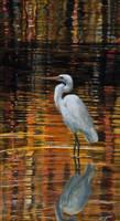 Egret by FredaSurgenor