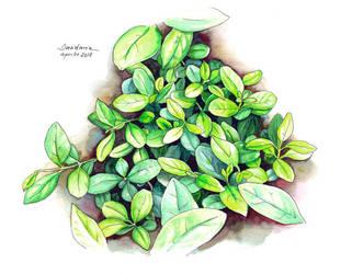 Happy spring bush by dasidaria-art