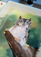 Owl - WiP 2 by CamillaMalcus