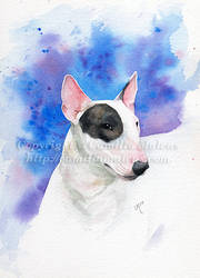 Bull Terrier sketch by CamillaMalcus