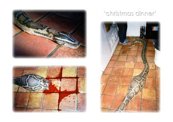 A Christmas Dinner by EmeraldGems