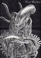 Xenomorph (Alien) by Digital-Goth