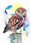 Little Owl by Digital-Goth