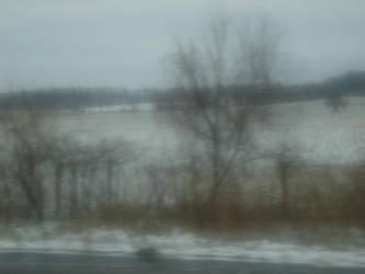 Snowy Field by DList