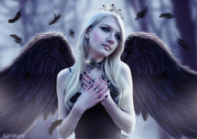 Wings of black by katmary