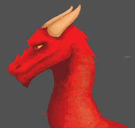 Dragon by In-saneJoker