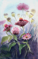 zinnia and poppy by jennomat