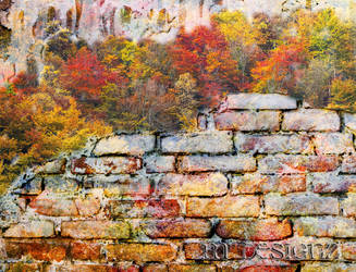 The Wall Surrounding My Secret Life by 33M