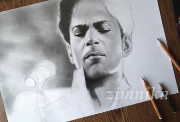 Prince. Work in progress by zimnika7