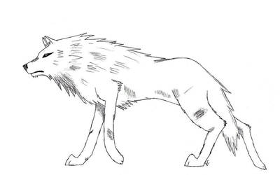 Stray Wolf by Palm-oasis by Seeking-Rakuen