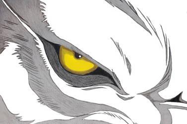 Kiba's terrifying eye by Seeking-Rakuen