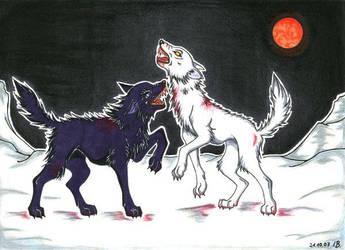 Wolf fight by Seeking-Rakuen