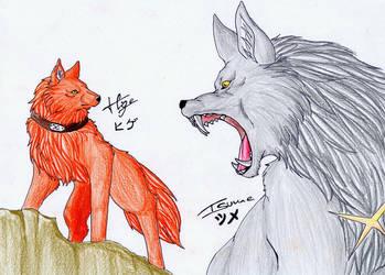 Hige and Tsume by Seeking-Rakuen