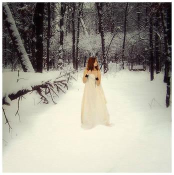 Into The Cold by FusionKilla