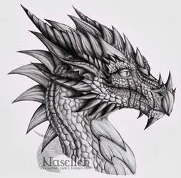Portrait of Veteran Dragon by Naseilen