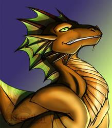 Dragon 20 by Naseilen