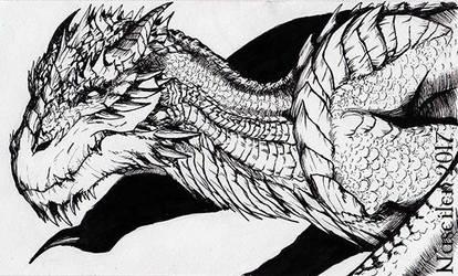 Dragon 24 by Naseilen