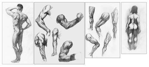 figure studies 01 by ongblack