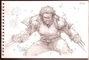 Logan - The Wolverine by werder