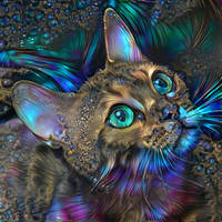 In a cat's eye all things belong to cats by eReSaW