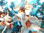 Summermemories by eReSaW