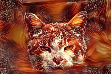 I'm the hottest cat in town by eReSaW