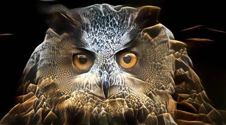 I'm  a Night Owl by eReSaW