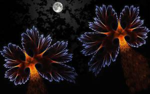 Moonlight Shadow by eReSaW