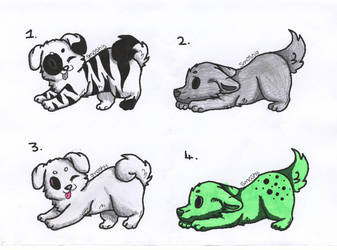 Puppy Adoptables 01 [2/4 OPEN] by Dragonslayer999
