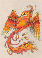 Little phoenix by Kokorvesa
