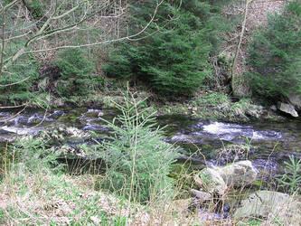 River Swirls by Irmanamers