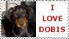 doberman stamp by schnuffibossi1