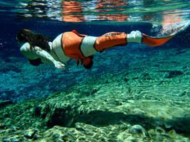 Clownfish mermaid by EarthSongDesigns